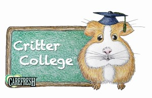 Critter College