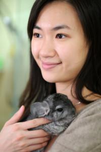introducing a classroom pet