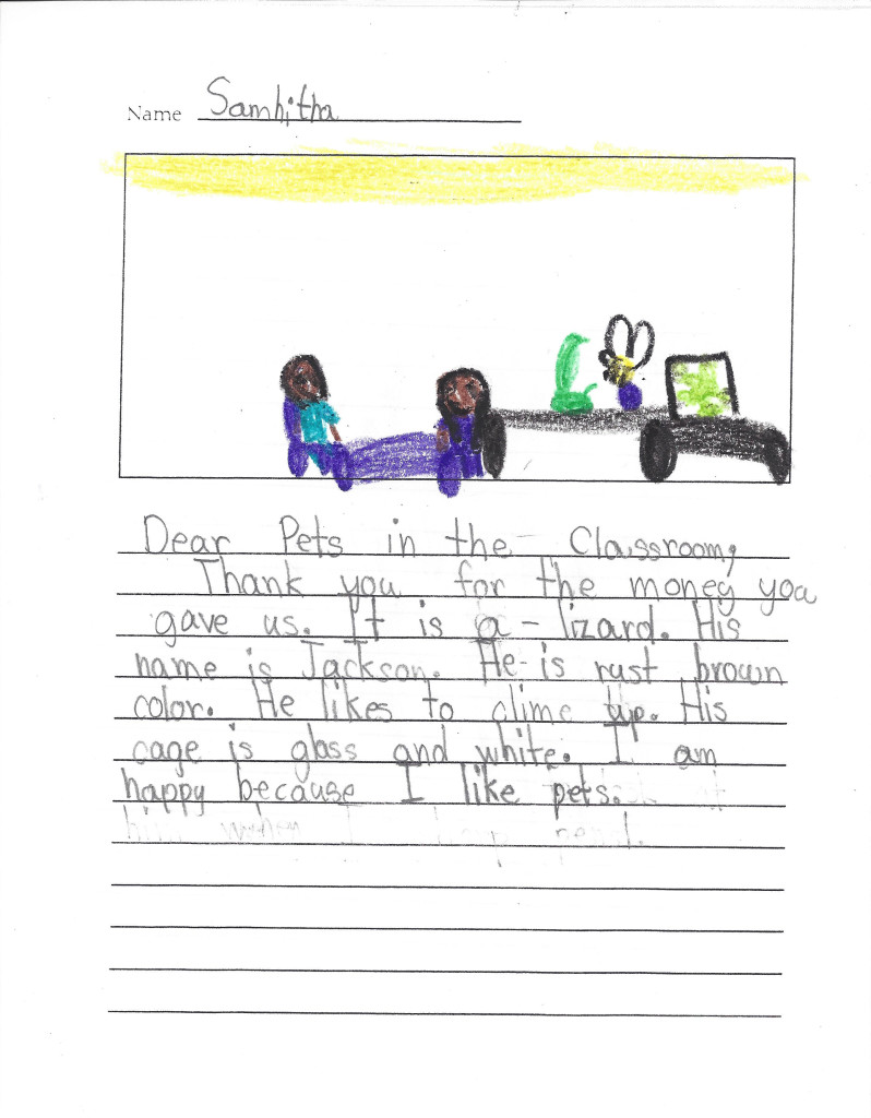 student pet art letter