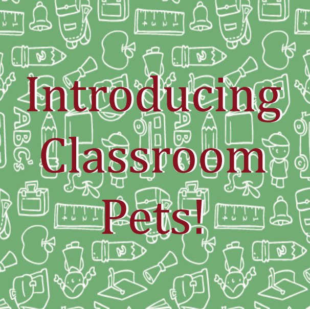 Introducing pets to your classroom.