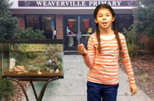 Weaverville-Yard-Sale-Commercial
