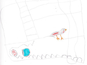 kinley's-pet-bird-drawing